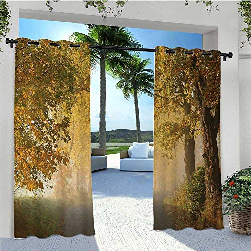 Adorise Outdoor Curtain Drapes Rural Road in a Misty Autumn Morning Countryside Pathway Scenery Natural Outdoor DéCor Patio Curtains Matches Your Exterior Wall Light Coffee Green W96 x L84 Inch