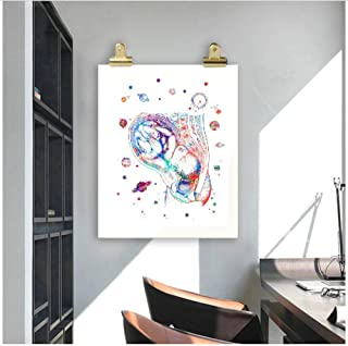 caomei Home Decor Prints Painting Nordic Human Internal Organs Pictures Wall Art Modular Canvas Poster Modern for Bedside Background -50cmx70cm (no Frame)