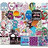 BLOUR 50 Pegatinas de flamencos de Dibujos Animados para teléfono móvil, Taza de Agua para Ordenador, Caja de Palanca para Guitarra, Pegatinas Decorativas Impermeables para Grafiti