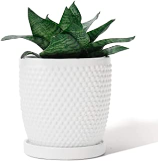 White Planters Pots for Plants Indoor - POTEY