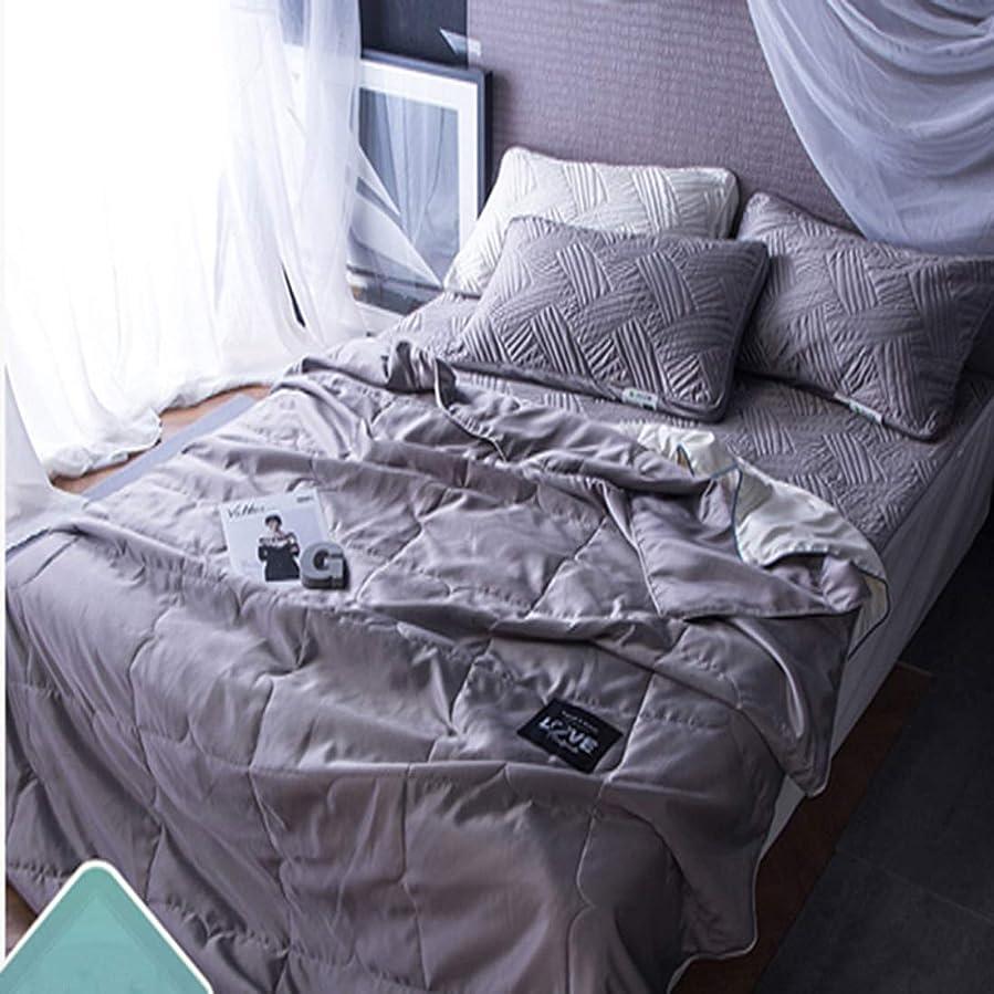 保持するデータムサイレントLonglong ミントと夏の涼しい薄いキルト毛布で洗われるエアコンキルト 敷布団 枕 掛け布団カバー ボックスシーツ (色 : グレー, サイズ : 180*220CM)