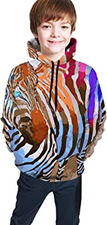 Cyloten Kid's Sweatshirt Watercolor Zebra Colorful Pullover Hoody Teen's Breathable Long Sleeve Sports Hoodies