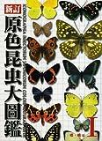 原色昆虫大圖鑑 第1巻(蝶・蛾篇)