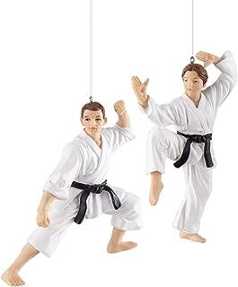 GALLERIE II Karate Class Christmas Xmas Ornament A/2 Multi