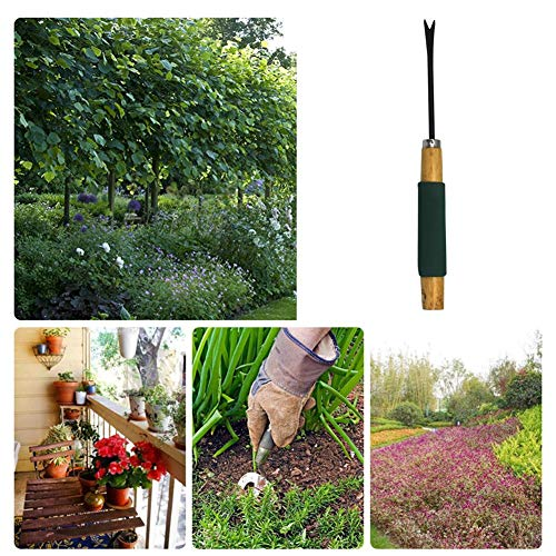Find Bargain PROKTH Daisy Grubber Garden Lawn Weeder Mini Garden Weeding Tool for Outdoor Lawn Yard