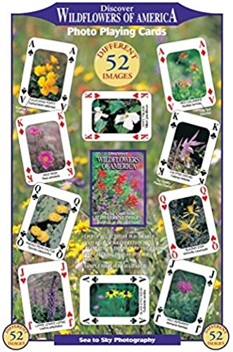 Discover Wildflowers of America Playing Cards by Standard