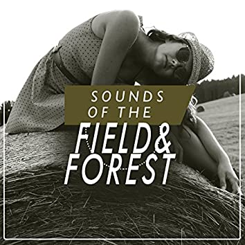 Sounds of the Field and Forest