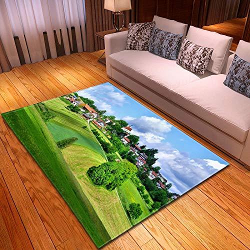 YQZS Home Designer Tapijt voor Woonkamer Interieur Decoratie Tapijt Blauwe hemel weide salontafel slaapkamer tapijt huis grote tapijt mat 120X160(47X63inch)