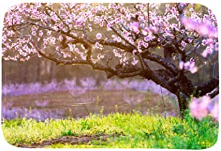 EGGDIOQ Doormats Cherry Blossoms Custom Print Bathroom Mat Waterproof Fabric Kitchen Entrance Rug, 23.6 x 15.7in