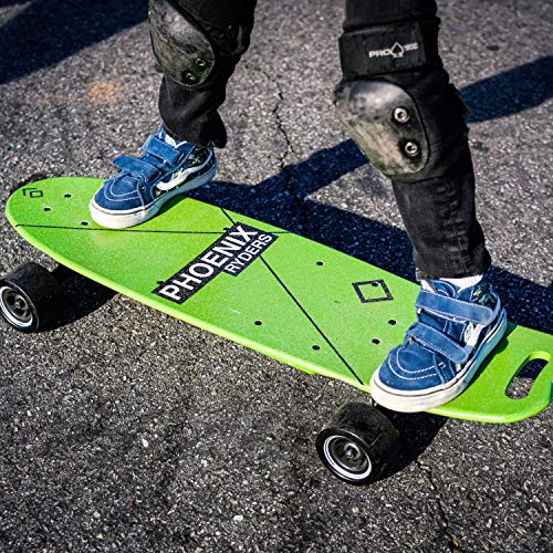 Alouette Electric Skateboard for Adult 16 MPH Top Speed 12.4 Miles Range, 5000 mAh Lithium Battery Stylish Colorful Electric Longboard with LCD Screen Remote