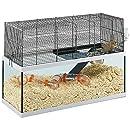 Ferplast Käfig für Rennmäuse Gabry 80 Kleine Nagetiere, Struktur auf zwei Etagen, Zubehör inklusive, Glastank und schwarz lackiertem Metallgitter, 79 x 30,5 x 51,4 cm