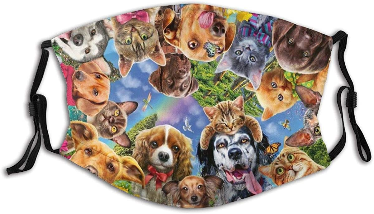 Cute Animals Funny Dog Face Mask With Filters Reusable Dust Mask Fashion Scarves Balaclava Washable Breathable Cloth Fabric Masks