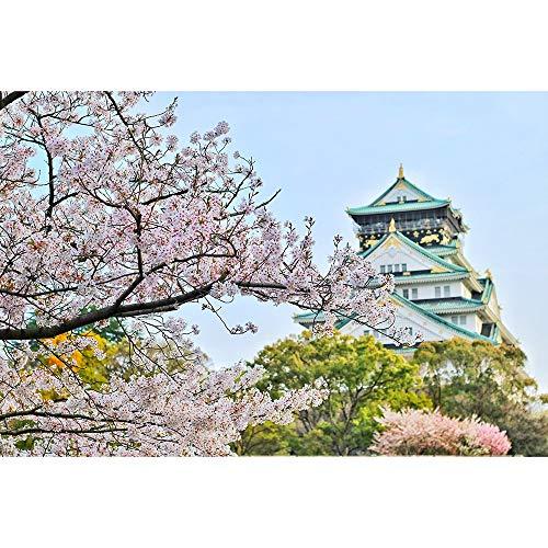 Hermosas Flores De Cerezo En Japón Rompecabezas Juegos De Rompecabezas De Ocio Para Niños Adultos Juguetes 500/1000/1500/2000/3000/4000/5000/6000 Piezas 1202 ( Color : Partition , Size : 3000 pieces )