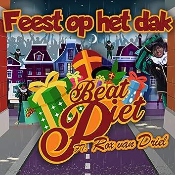 Feest Op Het Dak (feat. Rox van Driel)