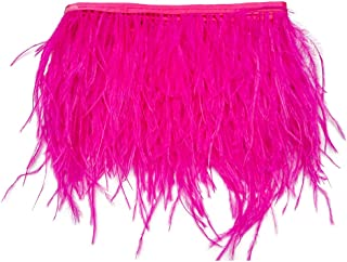 wanjin Ostrich Feathers Trims Fringe with Satin Ribbon Tape for Dress Sewing Crafts Costumes Decoration Pack of 2 Yards (fuchsia)