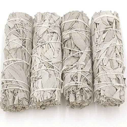 Salvia Blanca Pack 4 Unidades