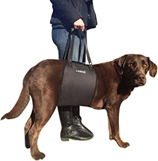 handicap dog harness