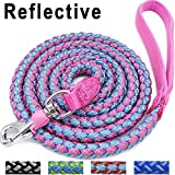 Mycicy Rope Dog Leash - 6ft Mountain Climbing Pink Dog Leash - Reflective Nylon Braided Heavy Duty Dog Training Leash for Large and Medium Dogs Walking Lead(pink)