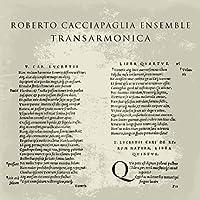 Transarmonica [12 inch Analog]