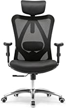 Mahmayi Ergonomics Office Chair Computer Chair Desk Chair, Adjustable Headrests Chair Backrest and Armrest'S Mesh Chair (B...
