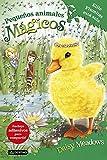 Ellie Plumitas está sola: Pequeños animales mágicos 3