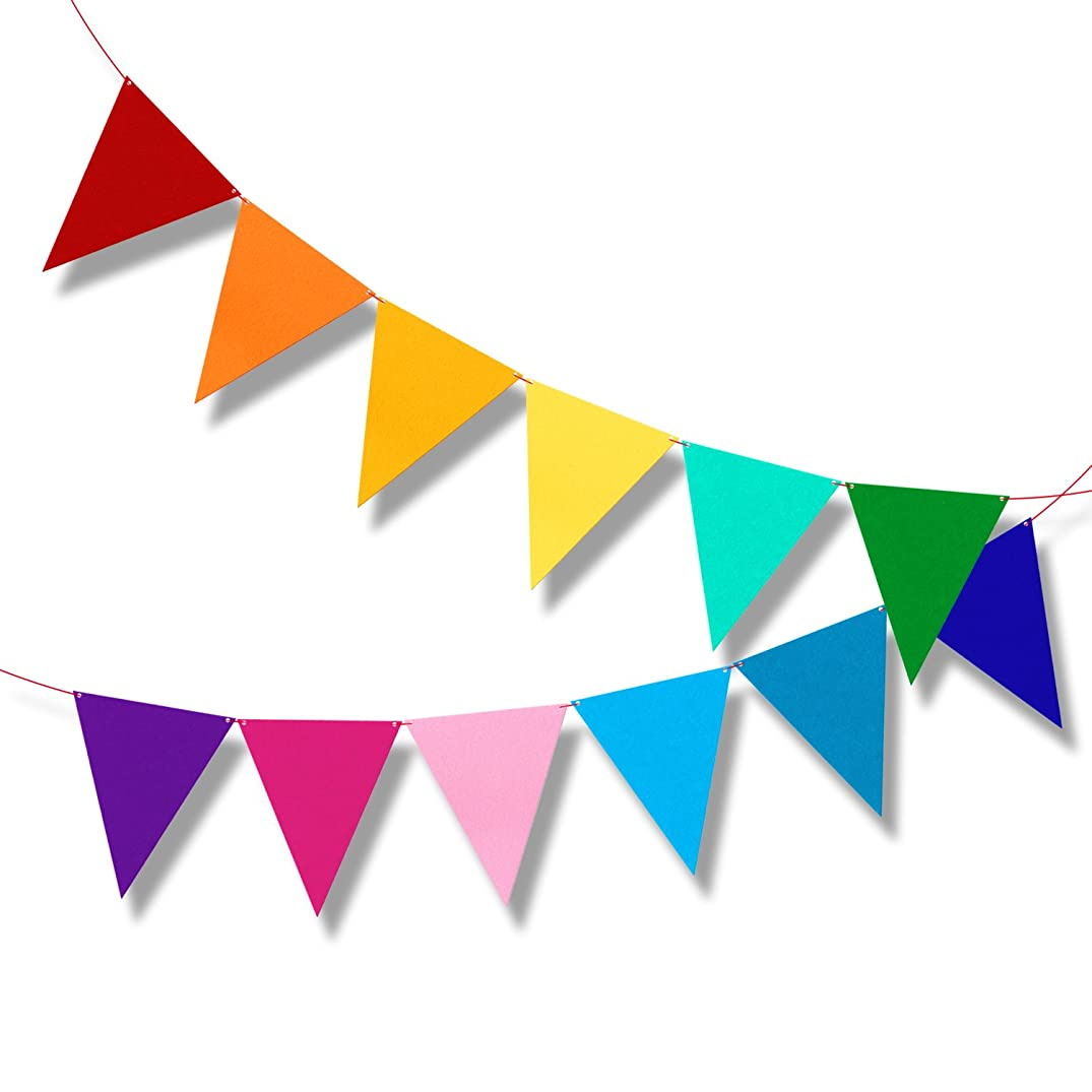 Multicolor Bunting Pennant Flags Banner Carnival Birthday Party Decorations 6.5ft