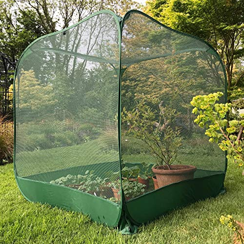 Photo of GardenSkill Pop Up Fruit Cage & Brassica Grow-House | Bird & Butterfly Mesh Plant Protection Cover – 1.25m x 1.35m high