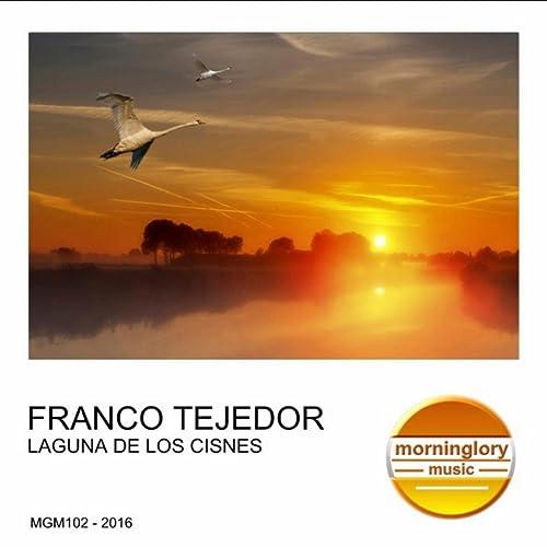 Amazon.com: Laguna De Los Cisnes (Original Mix): Franco ...