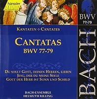 Bach: Cantatas, BWV 77-79 (Edition Bachakademie Vol 25) /Rilling by Johann Sebastian Bach (1999-07-19)