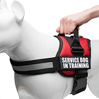 Industrial Puppy Service Dog In Training Vest With Hook and Loop Straps and Handle - Harnesses In Sizes From XXS to XXL - Service Dog Vest Harness Features Reflective Patch and Comfortable Mesh Design