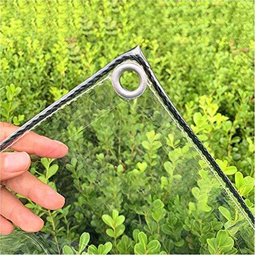 Lona, Cubierta Lona Resistente Desgarro, Plegable Lona Transparente Resistente Lluvia Resistente Viento para Camping Pesca Jardinería Mascotas CEHSIEN (Color : Claro, Size : 2.4x3m)