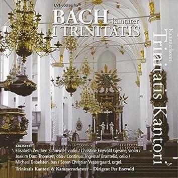 Bach - Kantater I Trinitatis