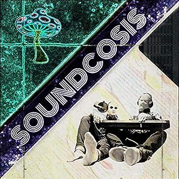 Soundcosis