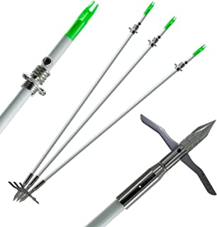 Best bowfishing arrow tip Reviews