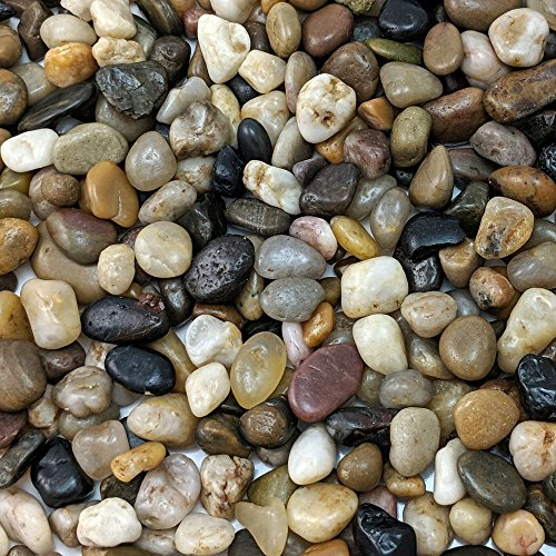 Natural Decorative Polished Mixed Pebbles 3/8' Gravel Size (5-lb Bag)