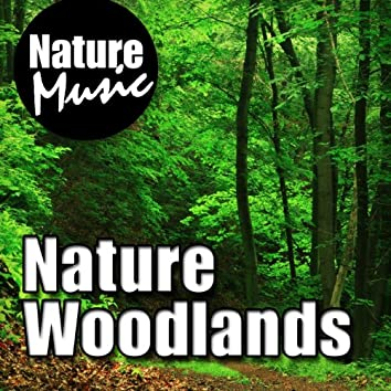 Nature Woodlands (Nature Sound with Music)