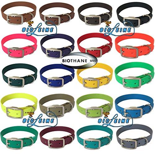 bio-leine Biothane Hundehalsband mit Dornschnalle – Halsband für kleine und große Hunde I schmutz- und wasserabweisend I Weinrot - Halsumfang 50-60 cm