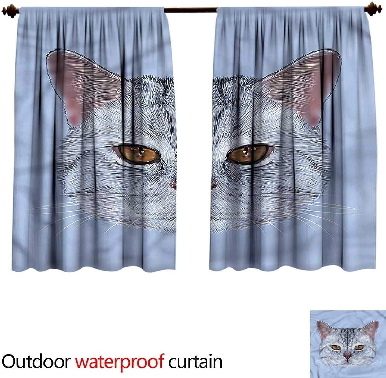 BlountDecor Curtain for outdoorAntiWater W55 x L45(140cm x 131cm) Cat,Scottish Hipster Kitty Pet