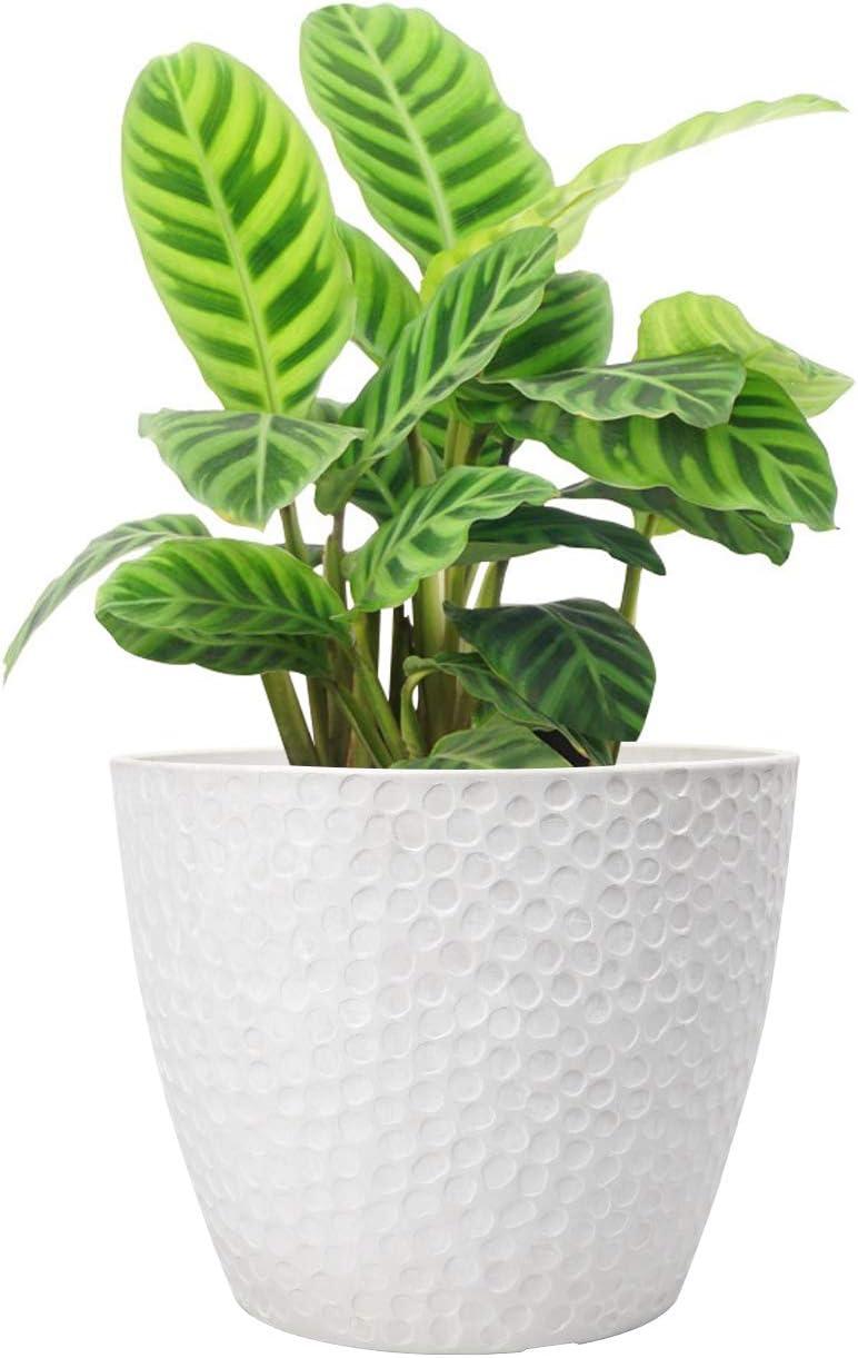 Buy Outdoor Indoor Planters Flower Pots   8.8 Inch Planter Pot ...