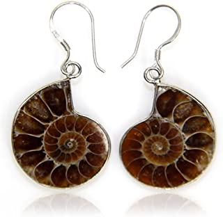 Natural Ammonite Fossil with S925 Sterling Silver Hook Charm Earrings