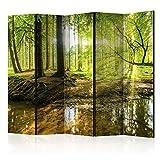 murando Raumteiler Wald Baum Natur Foto Paravent 225x172 cm beidseitig auf Vlies-Leinwand Bedruckt Trennwand Spanische Wand Sichtschutz Raumtrenner Home Office grün c-B-0183-z-c