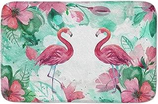 Watercolor Flamingo and Tropical Leaves Doormats Door Mat Entrance Mat Floor Mat Welcome Mats /Outdoor/Front Door/Bathroom Mats Rugs for Home/Office/Bedroom Non Slip Backing (23.6