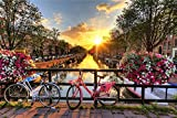 LUCKYYL Puzzle 1000 Piezas,Bicicleta y anochecer,Ejercicio Habilidades de Pensamiento Tiempo Feliz con Amigos y Familiares Decoración de Paredes