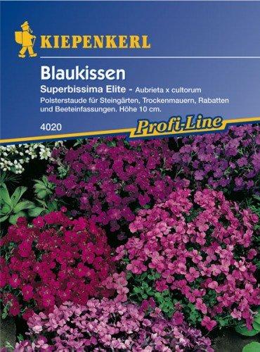Blaukissen Superbissima Elite
