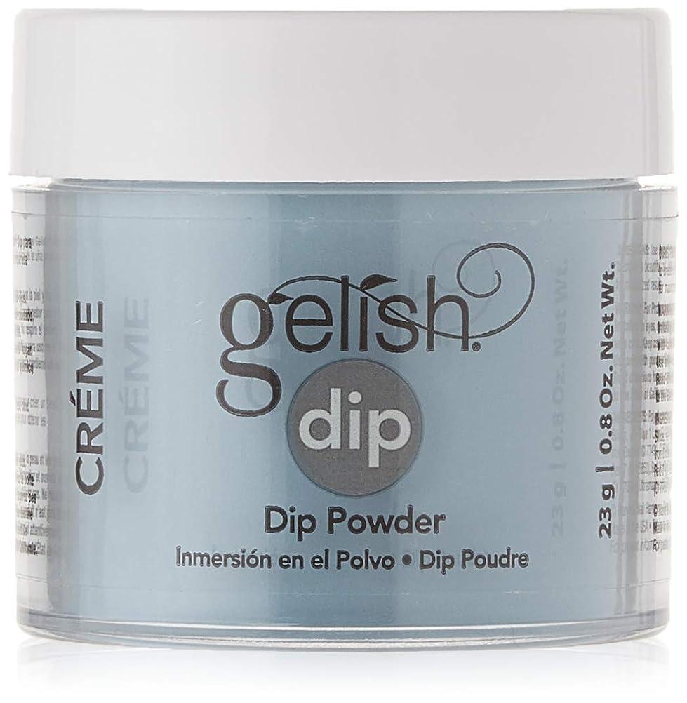 ストレスの多いありそうブレイズHarmony Gelish - Acrylic Dip Powder - My Favorite Accessory - 23g / 0.8oz