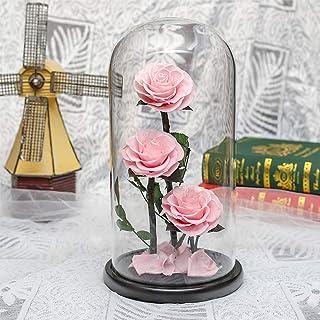 مجموعة زهور الأبدية باللون الأحمر، زهور محفوظة في قبة زجاجية، مثالية كهدية للزفاف، وأعياد الميلاد، والمهرجان، والكريسماس، ...