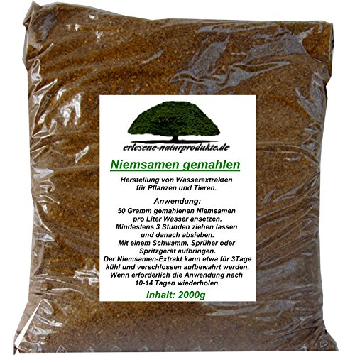 Niemsamen (Neemsamen) gemahlen, 2 kg von erlesene-naturprodukte