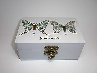 Caja artesana decorada Mariposa isabelina (Graelsia isabelae), Spanish moon moth