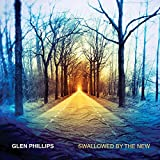 Songtexte von Glen Phillips - Swallowed by the New