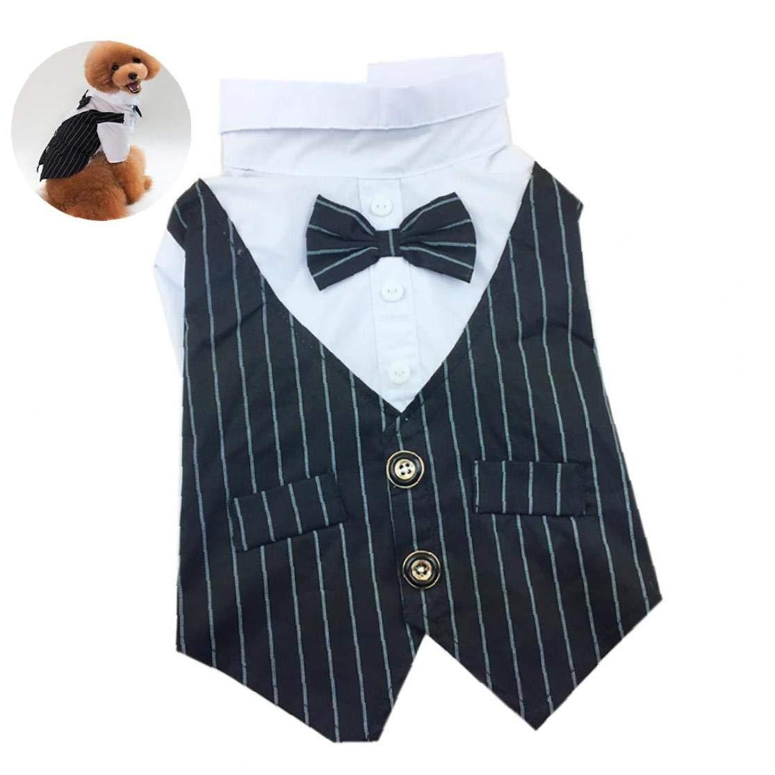 TDlmfRDi Juego Lazo del Traje De Arco Camisa De La Boda del Smoking Formal con Corbata De Negro para Perrito del Animal Doméstico del Perro Pequeño Negro L 1set: Amazon.es: Productos para